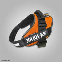 Harnais IDC-POWER JULIUS K-9 orange fluo
